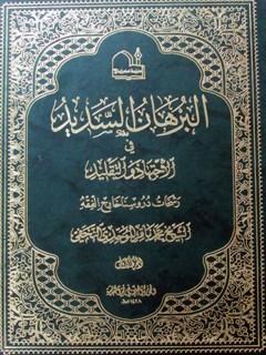 البرهان السدید فی الاجتهاد والتقلید: رشحات دروسنا خارج الفقه جلد 1