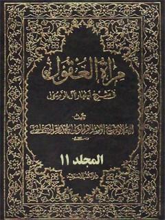 مرآه العقول في شرح اخبار آل الرسول ( عليهم الصلاه و السلام ) جلد 11