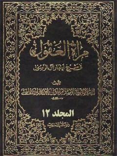 مرآه العقول في شرح اخبار آل الرسول ( عليهم الصلاه و السلام ) جلد 12