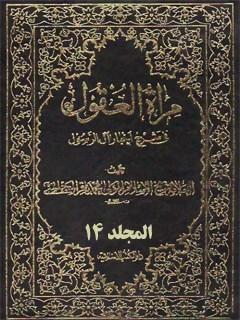 مرآه العقول في شرح اخبار آل الرسول ( عليهم الصلاه و السلام ) جلد 14